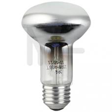 Лампа ЭРА R63-40W-230-E27 C0040648