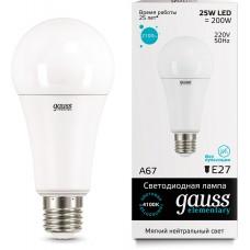 Лампа Gauss LED Elementary A67 25W E27 4100K 73225