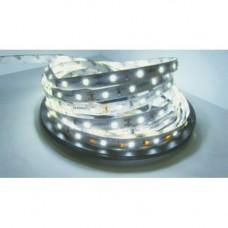 Лента светодиодная GLS-2835-60-4.8-12-IP20-6-PRO 500420