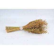 Букет из сухих колосовых культур (пшеница, лен, лаванда) 1082180