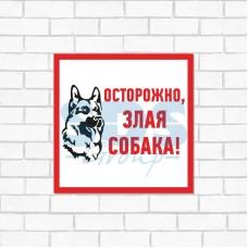 Табличка ПВХ информационный знак «Злая собака» 200х200 мм REXANT 56-0036-2