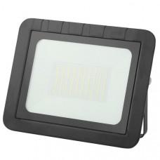 Прожектор ЭРА PRO LPR-061-0-65K-100 100Вт 9500Лм 6500К 290x230x36 Б0043592