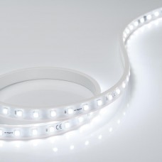 Лента ARL-50000PV-230V Cool 10K (5060, 54 LED/m, WP2) 027055